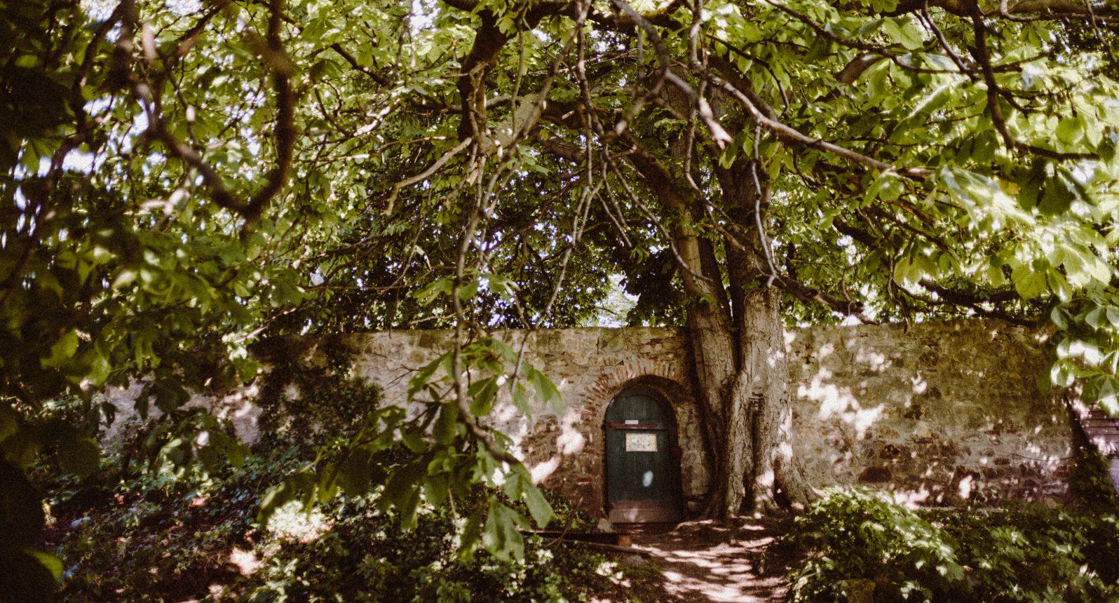 Tür in der Stadtmauer in Ballenstedt
